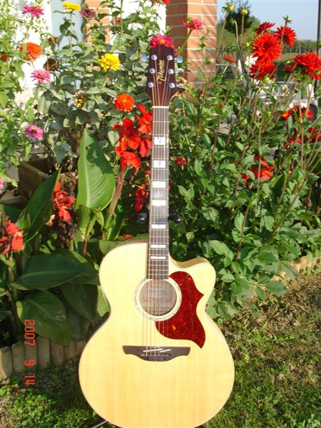 Takamine Jumbo Acoustic by Sarge in Sarge's Gear Collection